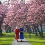 Cuidador com uma idosa